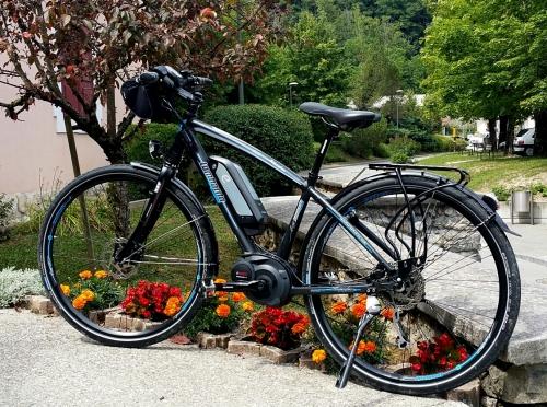 vélo Lombardo.jpg