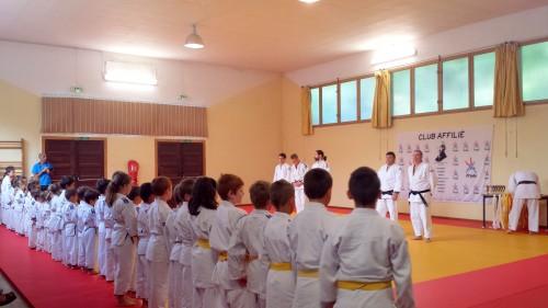 judo 18 06 2014.jpg