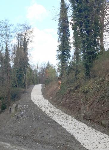 Chéran chemin barrage 17 11 2016 2.jpg